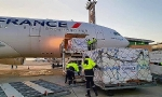 ​First Plane with Humanitarian Aid From France Lands in Yerevan
